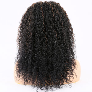 human hair lace front wig hightlight