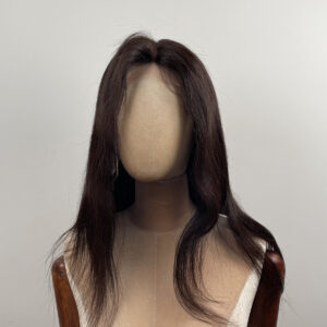 virgin hair high quality human hair lace front wig