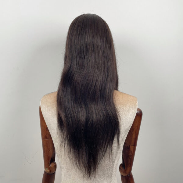 Silky straight lace front wig