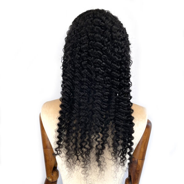 13*4 HD lace front wig